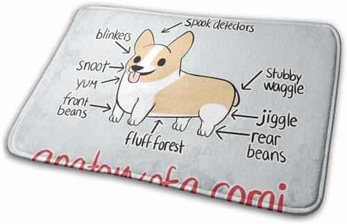 Anatomy of corgi mat